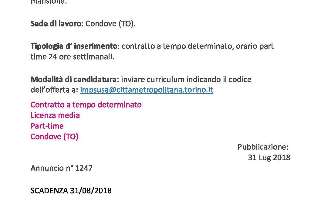 Autistascuolabus-Consulentiimmobiliari_CPISusa