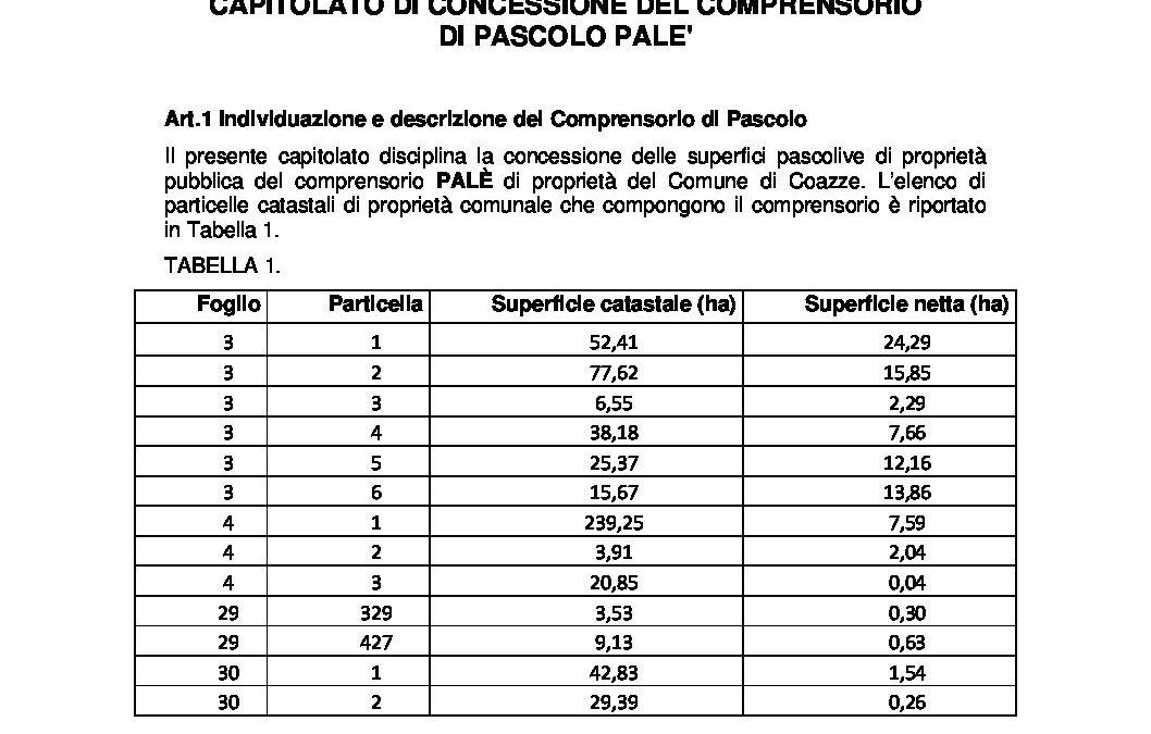Capitolato Pale 2